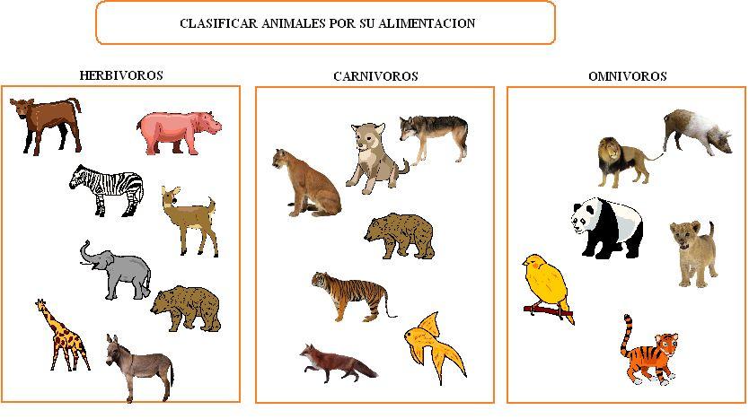 Fichas de animales carnivoros herbivoros y omnivoros para colorear ...