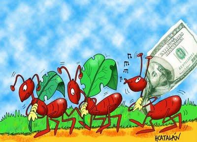 la solución está en nosotros las hormiguitas que difundieron el
