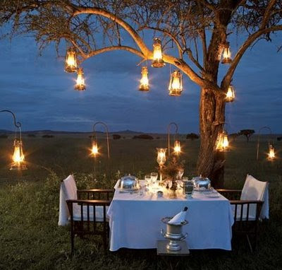 String lights in a tree during a romantic dinner for two