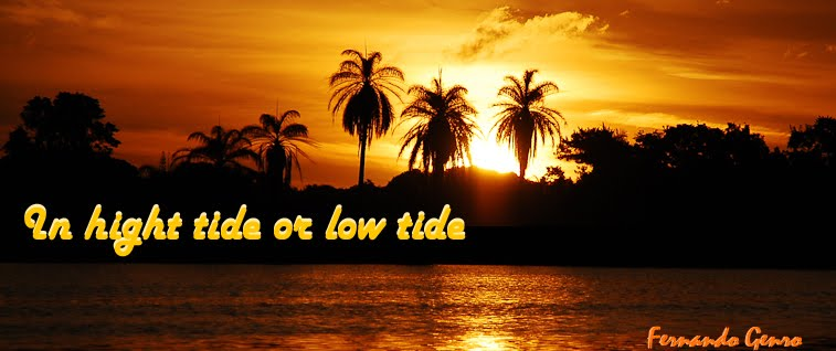 In hight tide or low tide