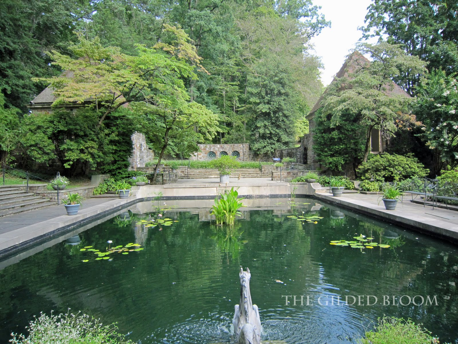 Winterthur museum and country estate the gilded bloom - Reflecting pool ...