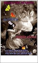 Santo de Gaviota