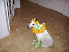 Kade Halloween