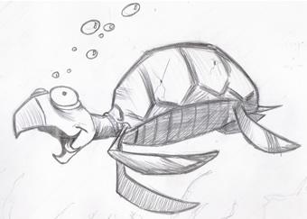DesenhoJP Sketchbook Tartaruga