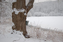 2010 SEASON Sap and snow