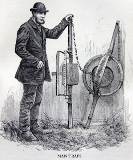 an illustration of man-traps from The Natural History of Selborne