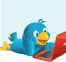 Meu Twitter   \/
