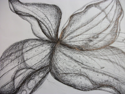 Black And White Line Drawing Flower : Stock photo hand drawn flower design sketch in black ink on brown