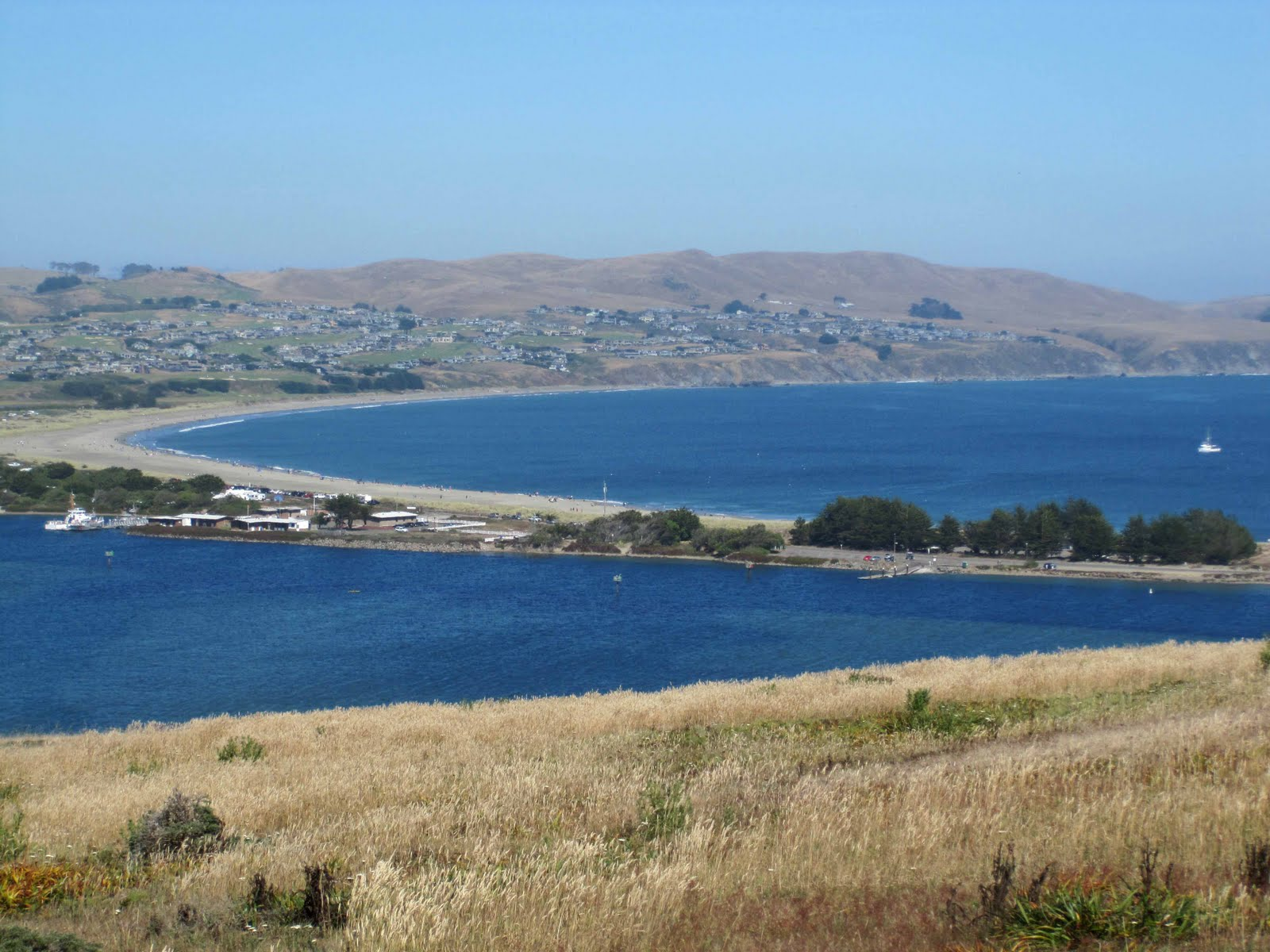 bodega bay single men over 50 On april 19, 1932, despard william taylor, single, a local property owner,  the  property, 50 feet wide by 100 feet long, was located in the community of bay   in june of 1956, mr david hundrichs, a single man, became the first resident.