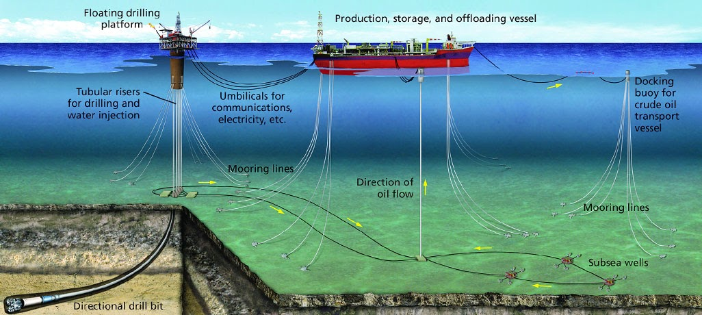 siphonophores  floating production storage and offloading