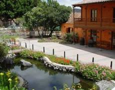 CASA MUSEO DEL VINO ( Villa de Santa Brigida)
