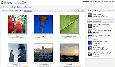 >Picasa by Tint Lwin