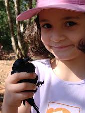 Aprendendo com a biodiversidade.