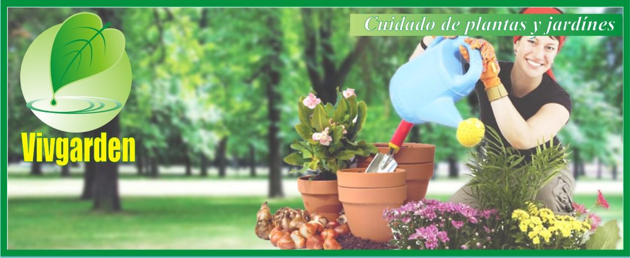Vivgarden: Arregla tu jardín y te da consejos