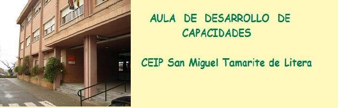 AULA DE DESARROLLO DE CAPACIDADES