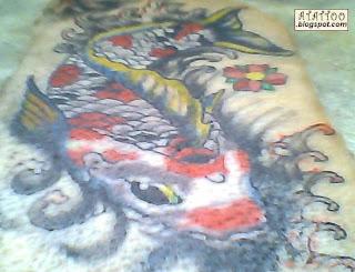 Carpa no rio tatuada em pele de porco