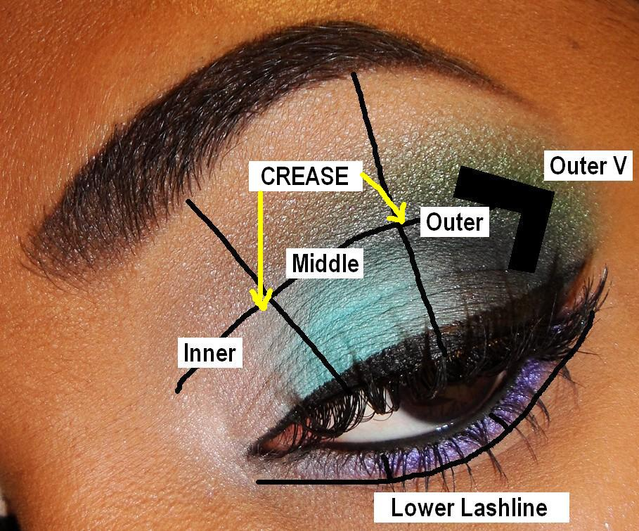the fancy face tips for beginners eyeshadow placement and rh thefancyface blogspot com Eyeshadow Application for Different Eye Shapes Eyeshadow Application Guide