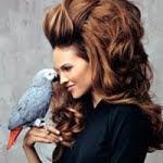 trend style hair