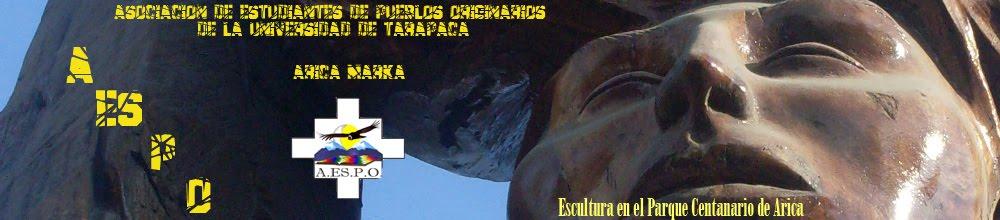 A.ES.P.O. Asociación de Estudiantes de Pueblos Originarios de la Universidad de Tarapaca -