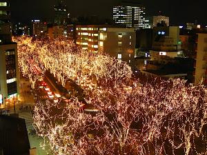 Festival in December