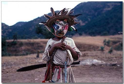 Indígenas, legítimos dueños de la biodiversidad