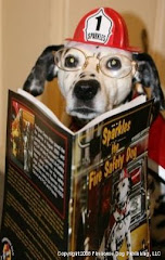 "Sparkles has read ""Sparkles the Fire Safety Dog."" Have you?"