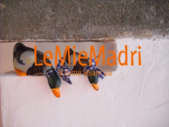 LeMieMadri