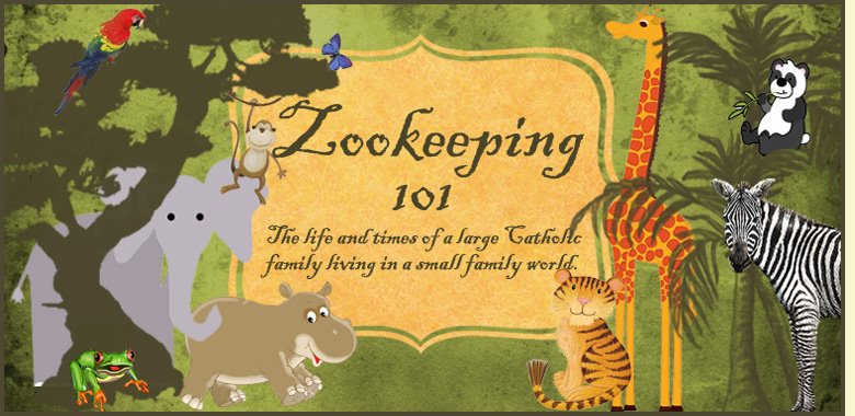 Zookeeping 101