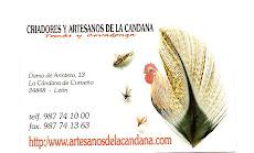 Artesanos de la Cándana. Plumas y moscas de los gallos de León.