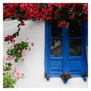 Casa Bonita - Mi Blog Tumblr