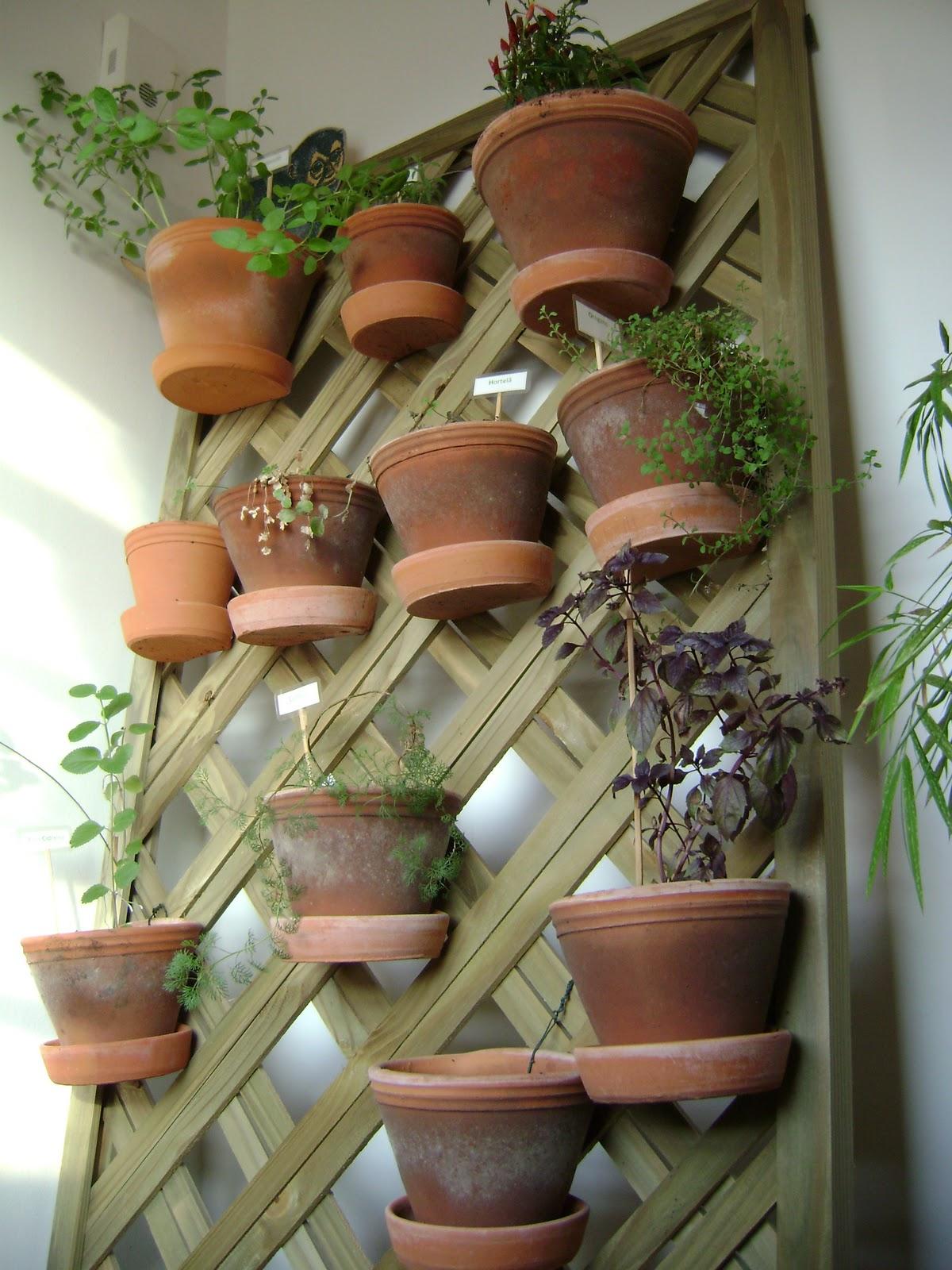 jardim vertical vasos meia lua : jardim vertical vasos meia lua:Pree Power . mix: Horta em apartamento