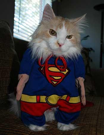 [superman.jpg]