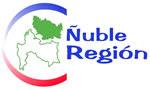 YO Apoyo Ñuble Region(Clic en logo para ir a web Oficial)