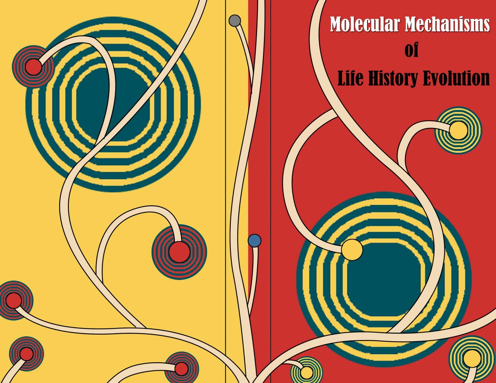 Book Cover Illustration Composition ~ Mmurcia d design book cover composition