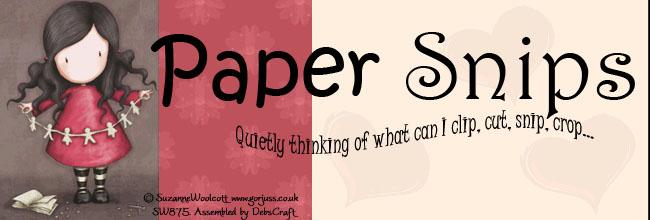 Paper Snips