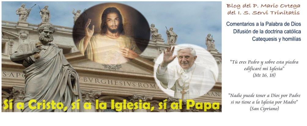 Sí a Cristo, sí a la Iglesia, sí al Papa