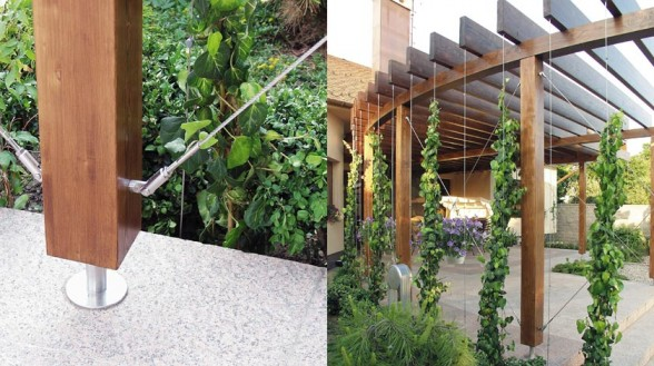 Incredible Modern Trellis Designs 588 x 329 · 80 kB · jpeg