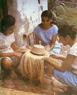 Tejedoras de Iraca