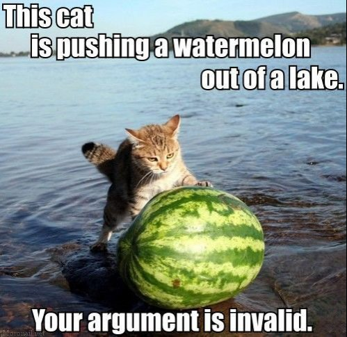 this-cat-is-pushing-a-watermelon-out-of-a-lake.jpg