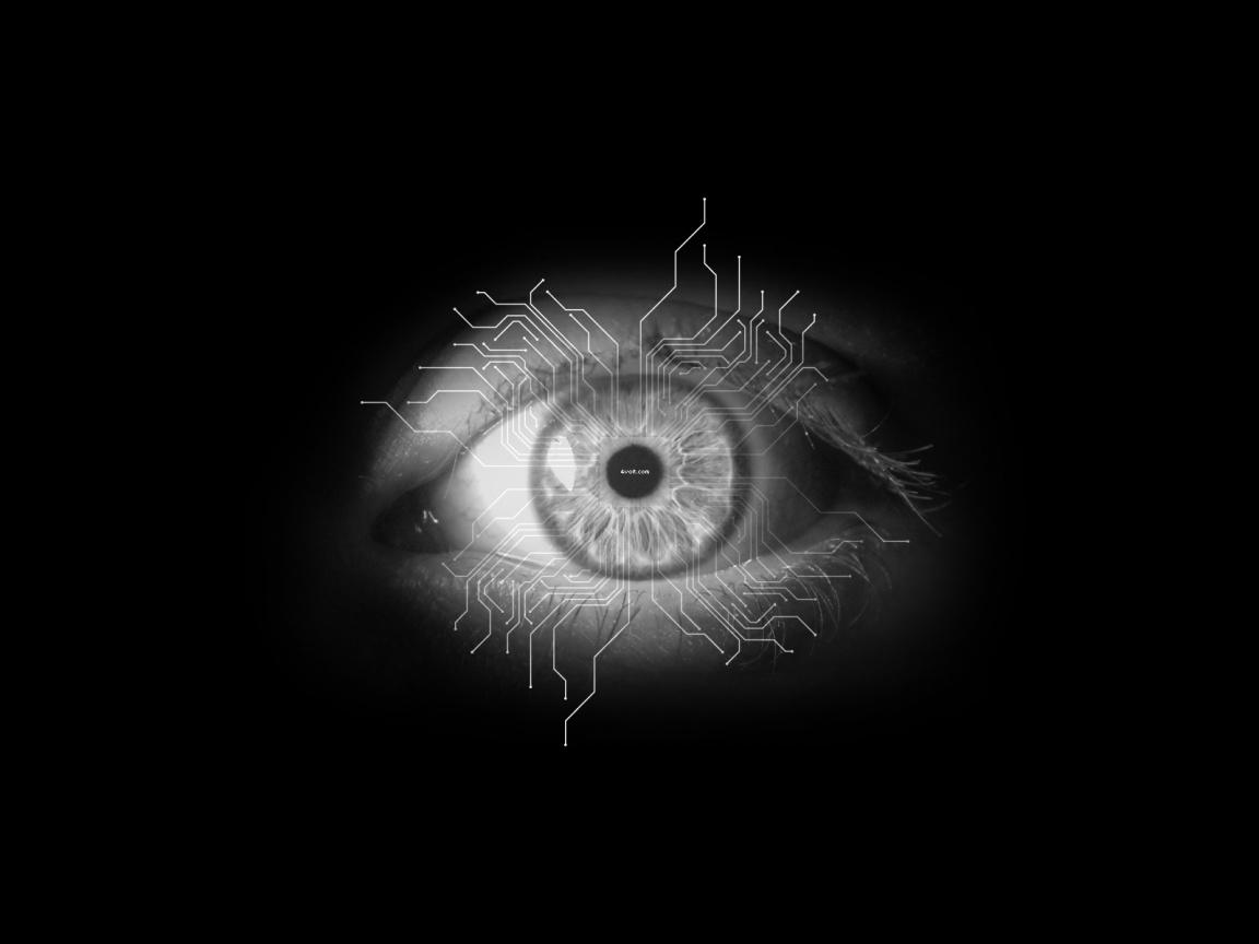 http://1.bp.blogspot.com/_nsJfltGVRGo/TVLE_hFhlyI/AAAAAAAAABc/2ohF1OL_B-Y/s1600/electronic-eye_wallpapers_8039_1152x864.jpg