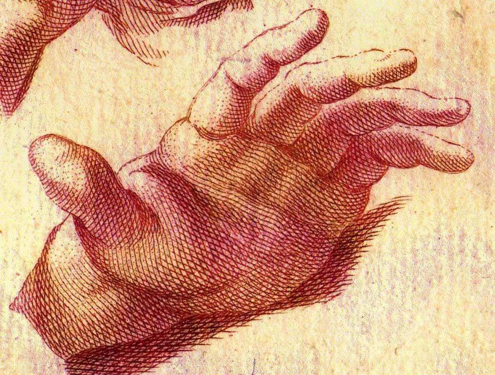 Penchons-nous maintenant sur les différentes couleurs de la main