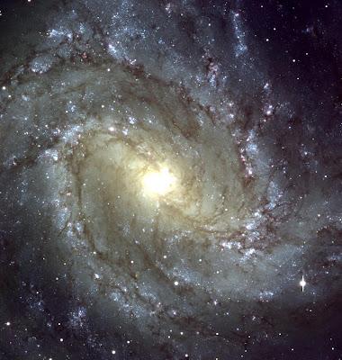 les plus belles photos de l'univers GalaxieM83NGC5236