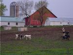 Kalona Farm