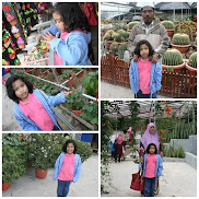 Cameron Highlands Dis 2010