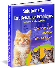 Solutions To Cat Problems