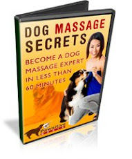 Dog Massage Technique