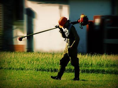 cortando hierba | panama |by wakalani