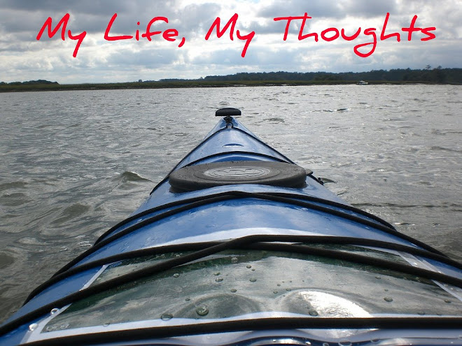 My Life, My thoughts