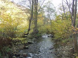 Râul Cugir