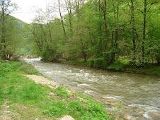 Râul Mare